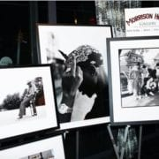 Morrison Hotel Gallery Unveils New Exhibit At Dream Downtown